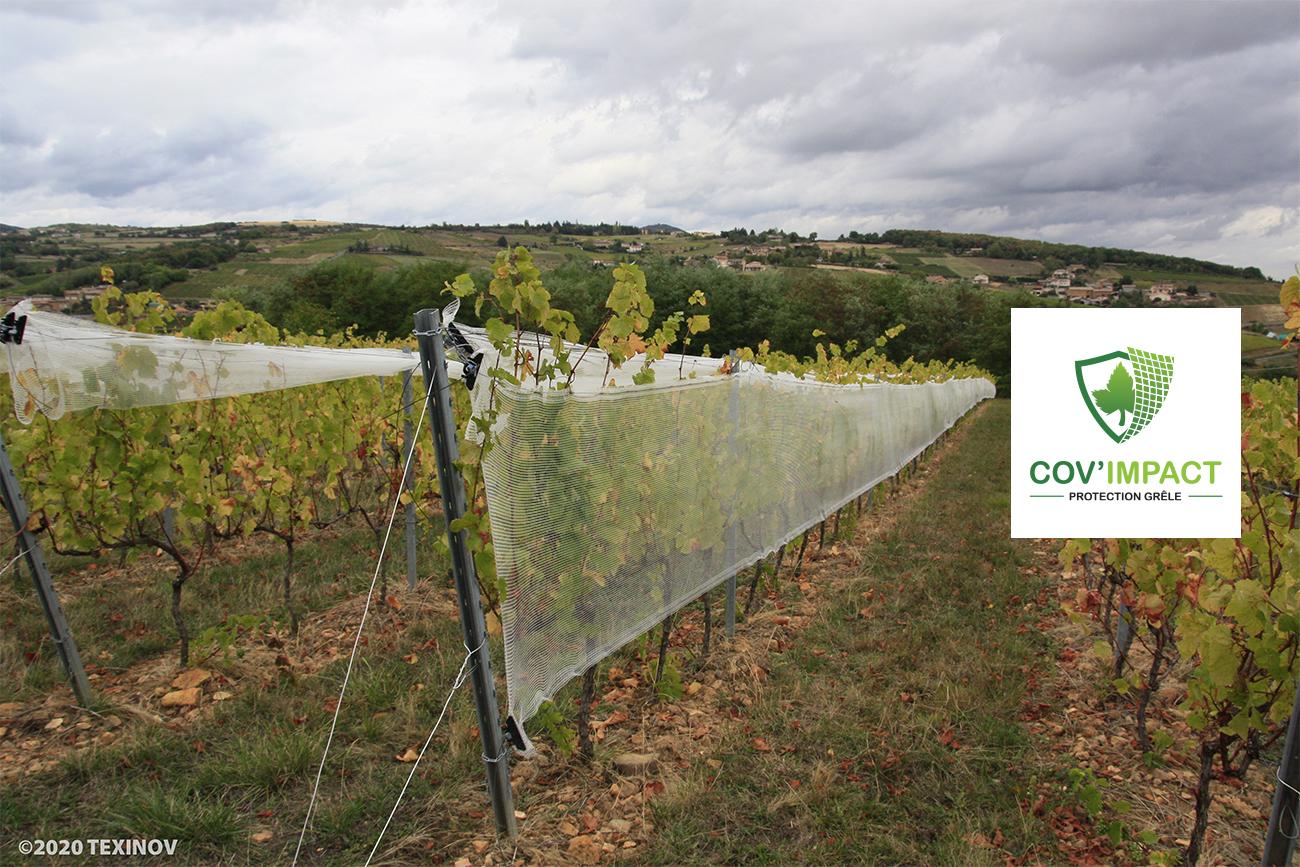 Solution protection contre la grêle pour la vigne Cov'Impact
